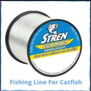 Best Fishing Lines For Catfish