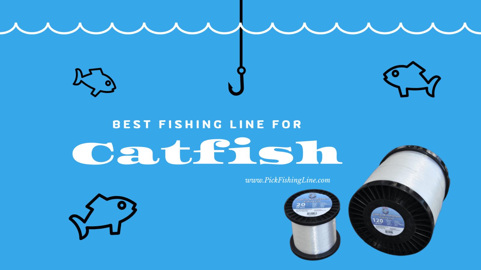 Best Fishing Line For Catfish